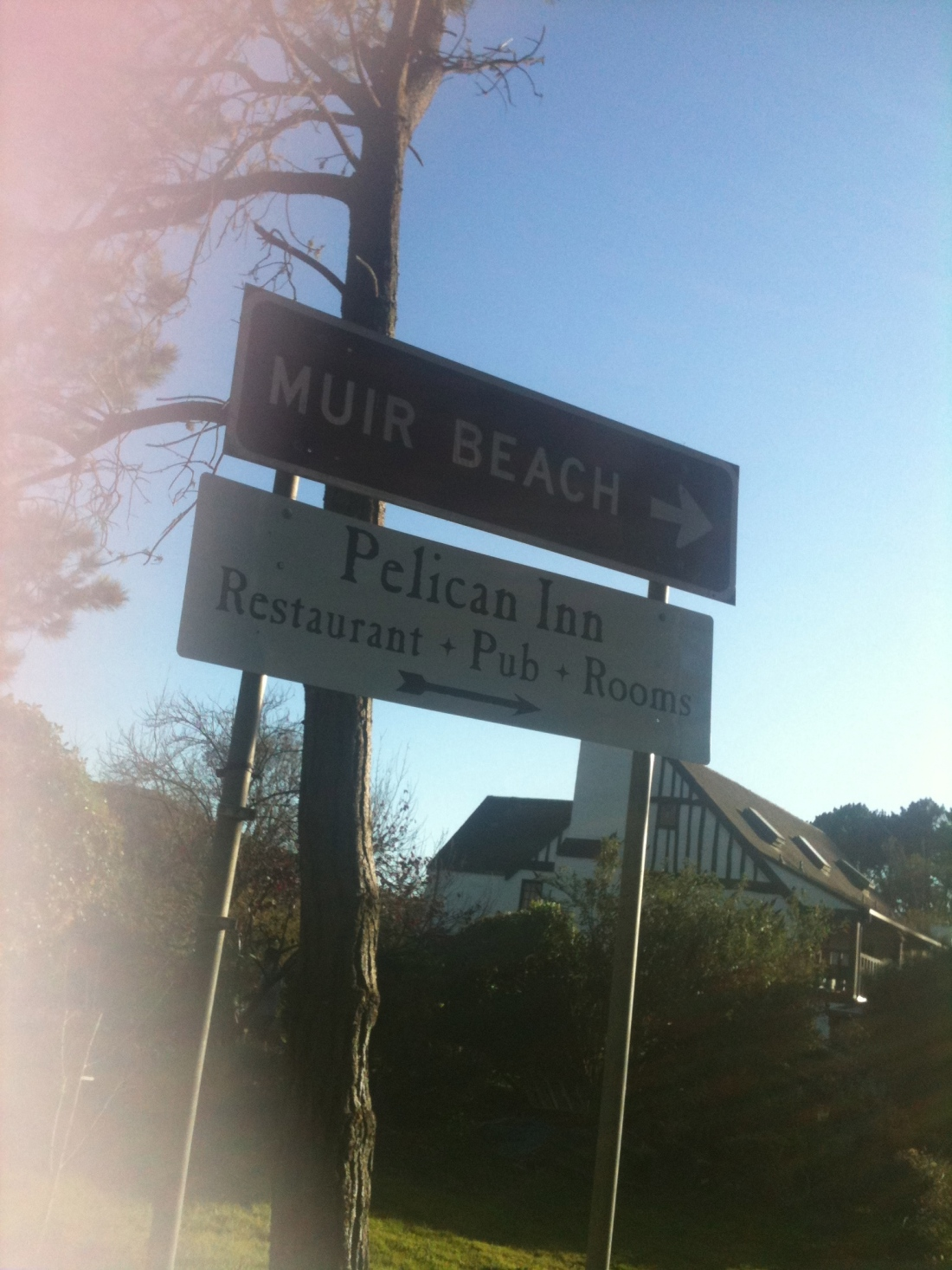 IMG_1346.muir beach